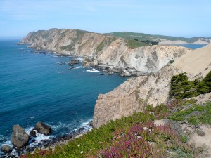 Ozeanische Kruste (Point Reyes Halbinsel)