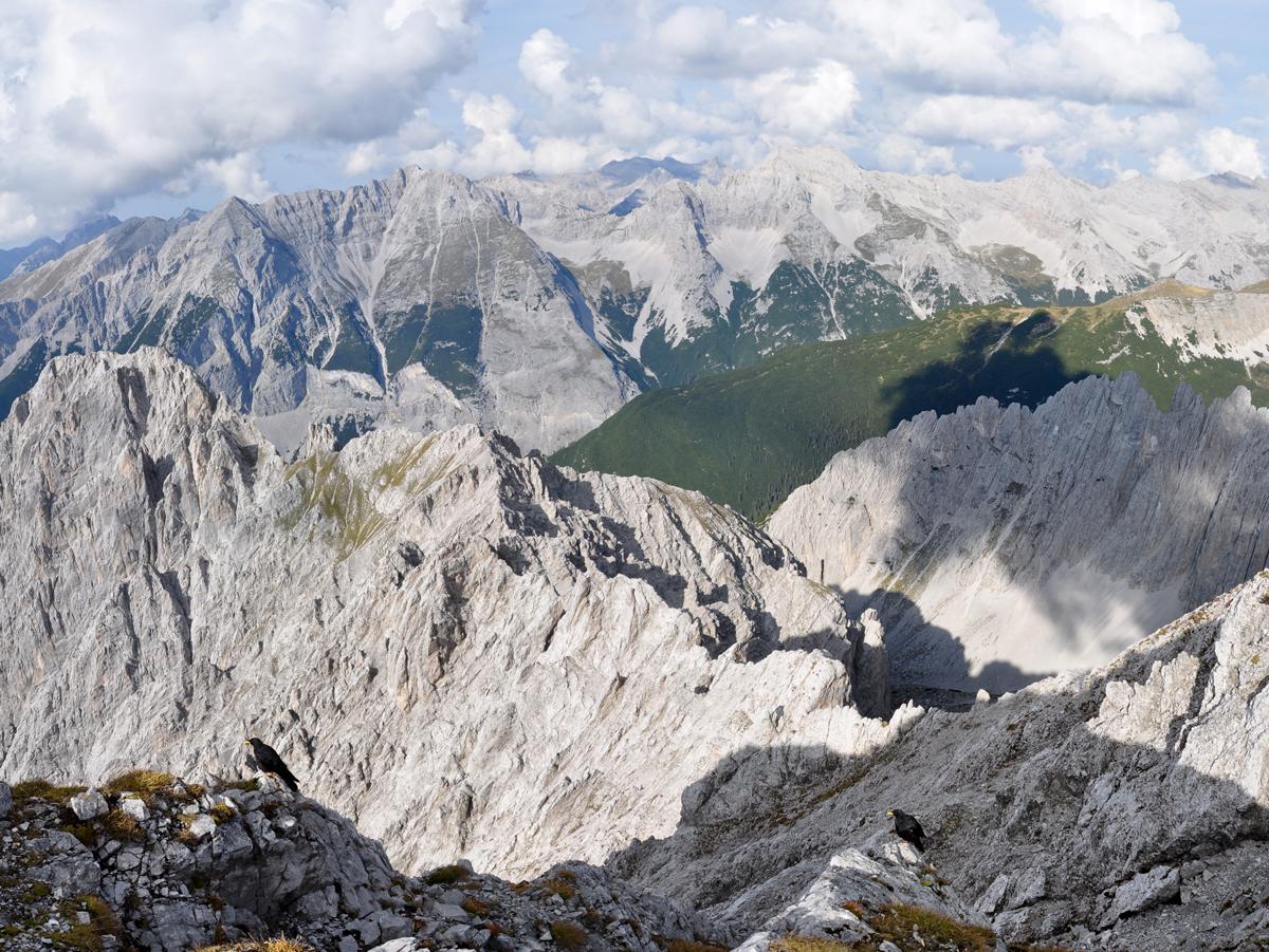 Klettersteig Nordkette : Alpine geckos innsbrucker klettersteig c d mit martin stefan und